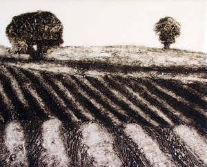 Collograph Print on Paper