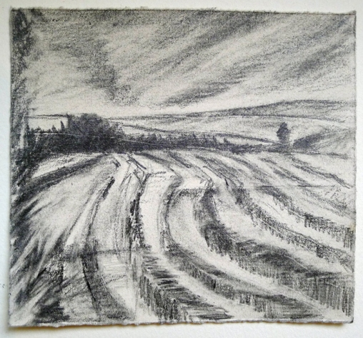 Field Lines, graphite on paper