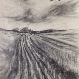 Field Lines 2, autumn 2014